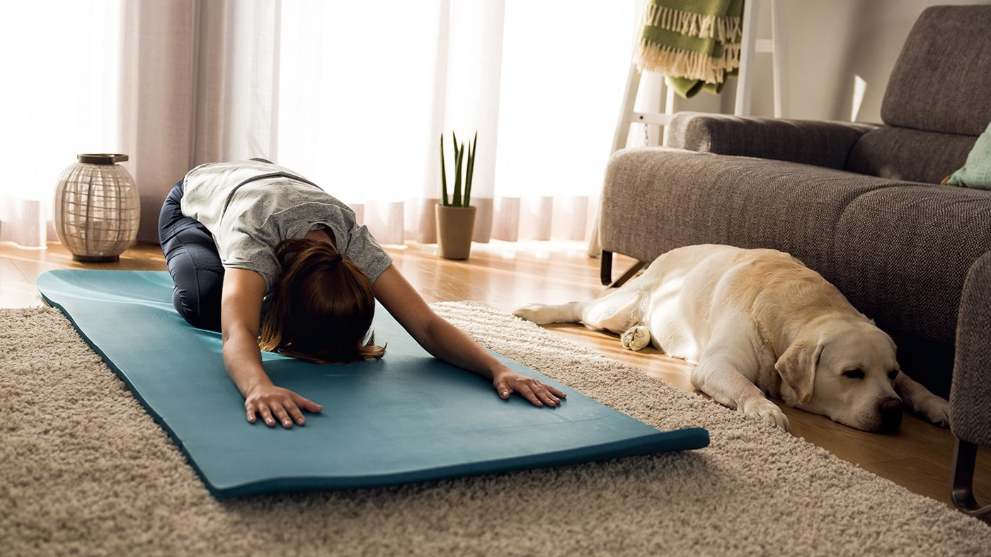 Exercising with a dog
