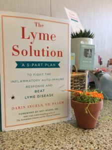 """The Lyme Solution"" My Book. Lyme disease."