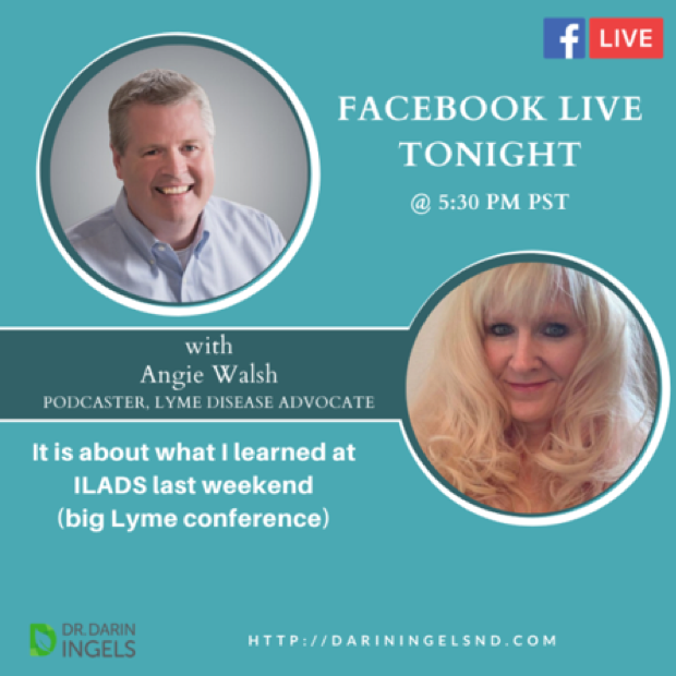 In Wellness from Late Stage Lyme Disease & Coinfections (w/ Angie Walsh)
