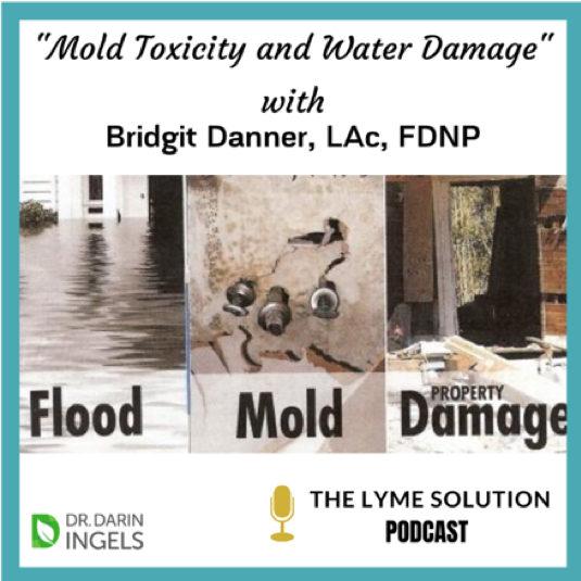 Mold Toxicity and Water Damage with Bridgit Danner